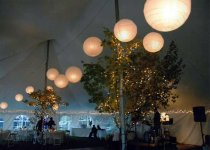 Paper Lanterns  in 40 x 60 Tent